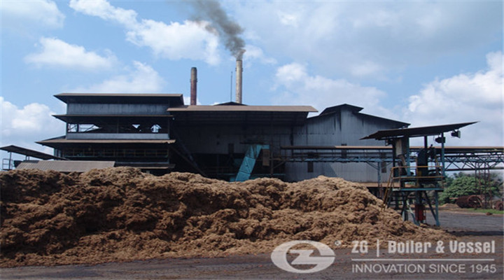 auto biomass hot water boiler